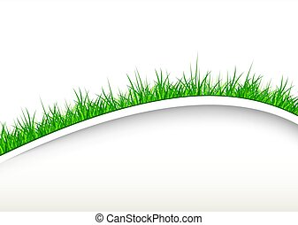 White background with green grass