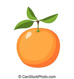 white background with realistic orange fruit
