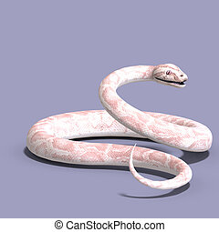white ball python - 3D rendering of a white ball python with...
