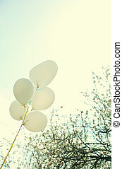 white balloons on blue sky background