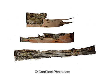 white bark - tree bark in the form of a scroll isolated on ...