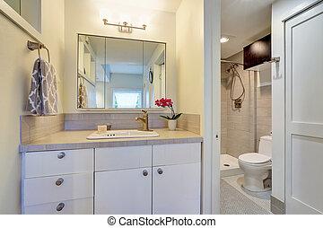 White bathroom interior design with flower pot.