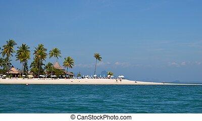white beach and palms