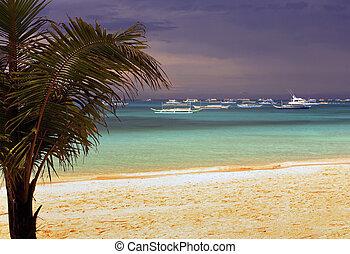 White beach before a thunder-storm