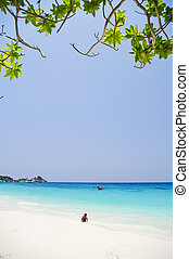White beach with beautiful blue sea at Similan Thailand