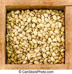 White bean on wooden box