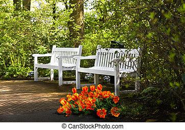 White benches in park in spring