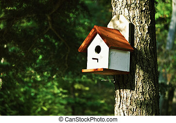 Bird House - WHite Bird House On The Pine Tree