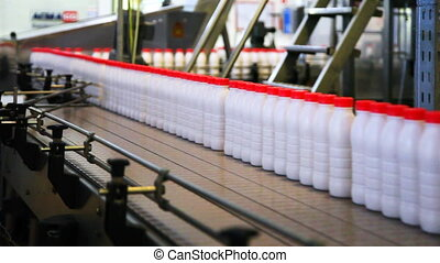 bottles yogurt with red caps move wide conveyor belt at factory