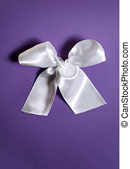 white bow on a blue background