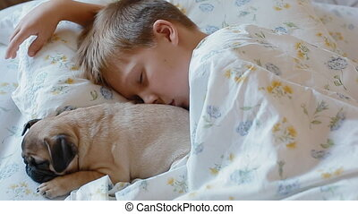 White boy sleeping in the bed with puppy pug
