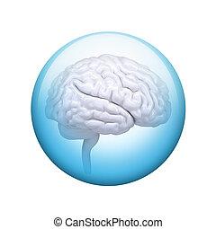 White brain. Spherical glossy button