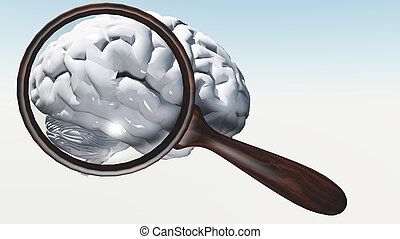 White Brain under magnifying glass