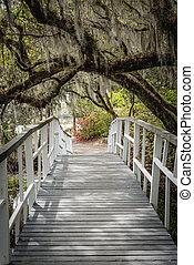 White Bridge Crosses Under Spanish Moss