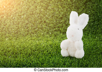 Bunny toy on green grass