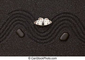 White butterfly in zen garden with wave lines in the black grain sand