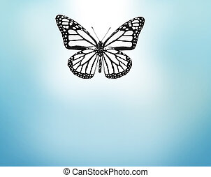 White butterfly , isolated on blue background