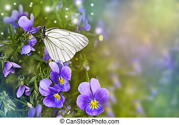 White butterfly sits on a lilac violet flower - White...