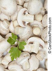 White button or champignon mushrooms