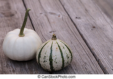 White Casper pumpkin next to a green and white gourd