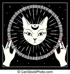 White cat face with moon on night sky with ornamental round...