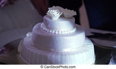 White celebration cake at the party
