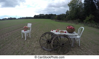 white chairs and table with apples - Two white wooden chairs...