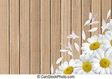 white chamomile flowers on wooden table background