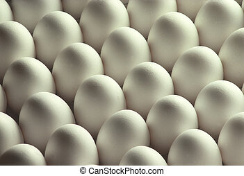 White Chicken Eggs - Over two dozen white chicken eggs lined...