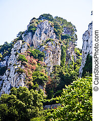 White cliffs rising out of the trees in Capri Italy