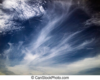 White cloud and bule sky