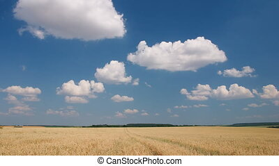 White clouds flying on blue sky - Time-lapse: white clouds...