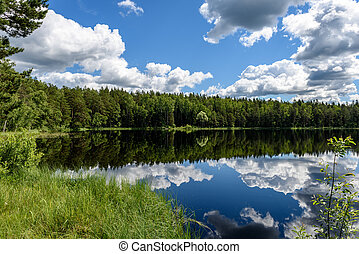 White clouds on the blue sky over forest lake