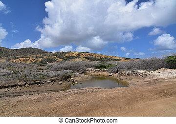 Scenic white clouds over an Aruban desert landscape.
