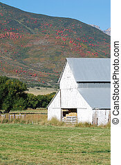 White Country Barn