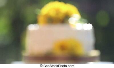 white creamy delicious cake
