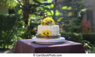 white creamy delicious cake zoom in