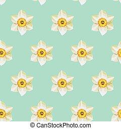 White daffodil seamless background