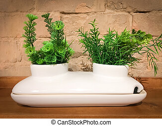 White decorative ceramic pot with two green plants