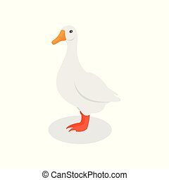 White domestic goose, poultry farming vector Illustration on...