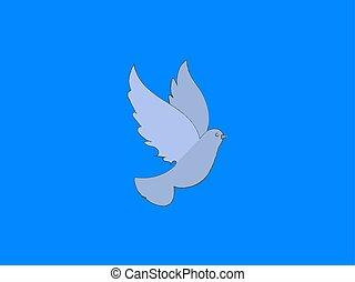 White dove, illustration, vector on white background.