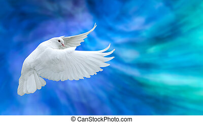 White dove symbol of faith - Dove in the air symbol of faith...