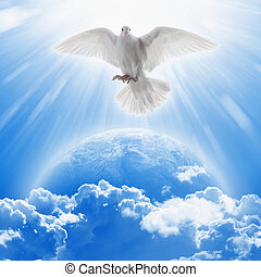 White dove symbol of love and peace flies above planet Earth...