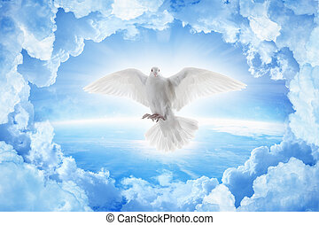 White dove symbol of love and peace flies above planet Earth