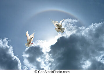 White doves against clouds and rainbow
