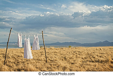 White dresses hanging on a line