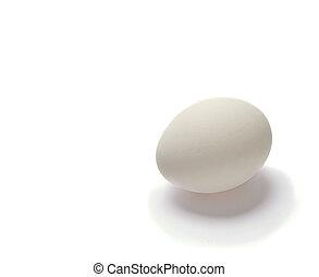 egg - white egg isolated on white background