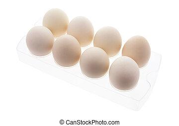 White Eggs in Plastic Egg Carton