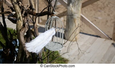 white feather swaying in the wind hanging