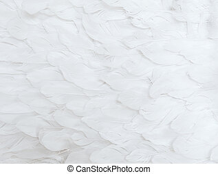 White Feathers - Close up of many soft white feathers
